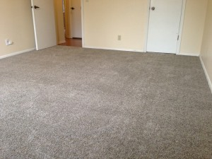 luscious-new-carpet-one