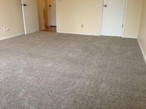 luscious-new-carpet-one