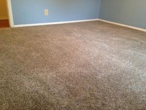 luscious-new-carpet-two