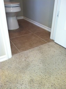 old-carpet-to-tile-transition-before